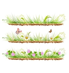 Set green grass on ground grass flowers clover vector