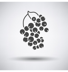 Black currant icon on gray background vector