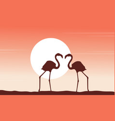 beauty scene flamingo silhouettes collection vector image vector image