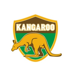 Kangaroo sports mascot shield vector