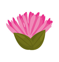 Pink flower spring bud with leaves vector