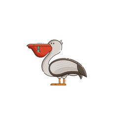 white pelican vector image