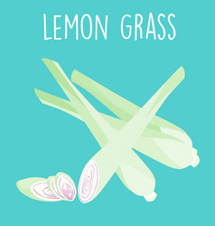 Fresh lemon grass plant and slice vector