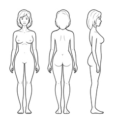 Female figure vector