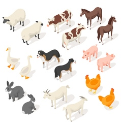 Isometric 3d set of farm animals vector image vector image