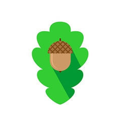 Acorn sign on the oak leaf background flat logo vector