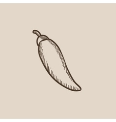 Chilli sketch icon vector