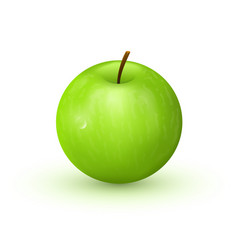 green apple on white background vector image