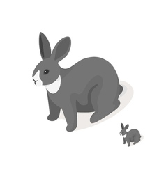 Isometric 3d of grey rabbit vector