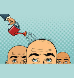 Remedy for hair growth bald man poured from a vector
