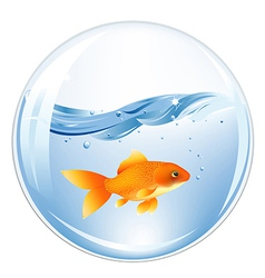 Ball with goldfish in water vector