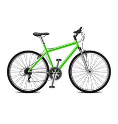 geen bicycle isolated on white vector image