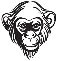 Hand drawn portrait of monkey chimpanzee black and vector