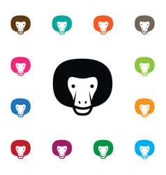 Isolated gorilla icon chimpanzee element vector