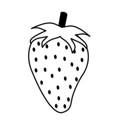 Juicy sweet fresh frui vector