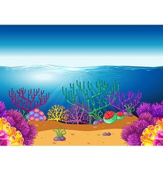 Nature scene with coral reef underwater vector