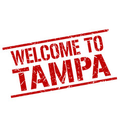 Welcome to tampa stamp vector