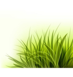 Abstract background with green grass vector
