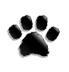 black paw print vector image