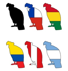 Andean Condor flags vector image