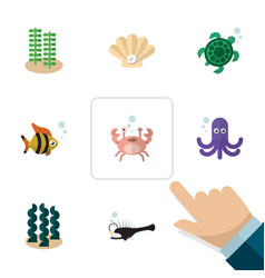 Flat icon sea set of seaweed cancer tortoise and vector