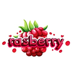 Font design with word rasberry vector