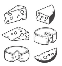 set of cheese icons isolated on white background vector image