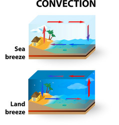 Con land breeze and sea breeze vector