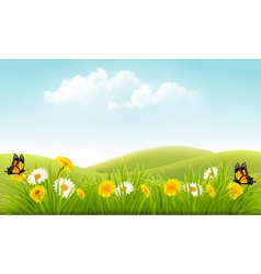 Summer nature background with grass and flowers vector