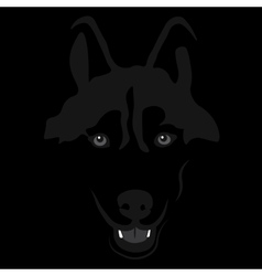 Dog in shadow siberian husky portrait vector