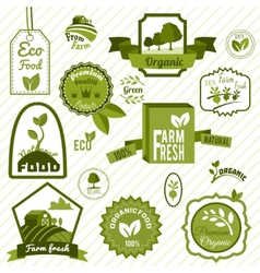 Green eco labels vector