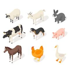 Isometric 3d set of farm animals vector