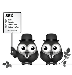 Market Research Sex vector image vector image