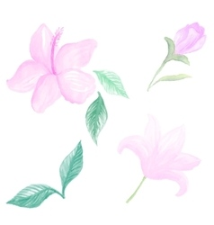 Watercolor flowers pasterl color vector