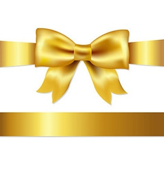 Gift satin bow vector