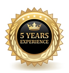 Five years experience badge vector