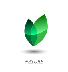 Green leaves logo vector image vector image