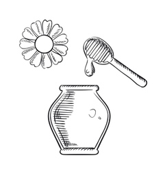 Honey jar with dipper and flower vector