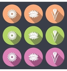 Flower icon set camomile daisy lily water-lily vector