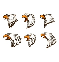Bald Eagle emblems set vector image vector image