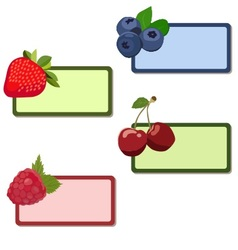 Labels berries vector image
