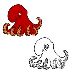 octopus isolated on white background vector image