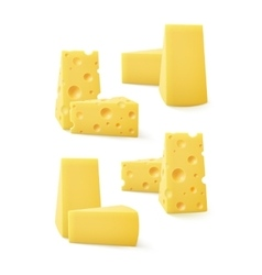 Set of triangular pieces various kind swiss cheese vector