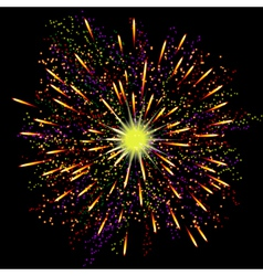 Bright abstract festive fireworks over black vector