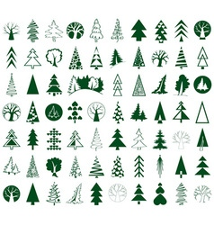 Coniferous and deciduous trees icons on white vector