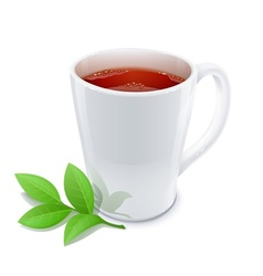 cup of tea with green tea vector image vector image