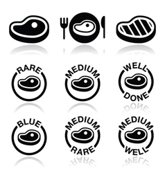 Steak - medium rare well done grilled icons set vector
