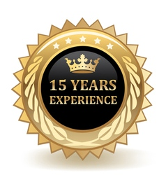 Fifteen years experience badge vector