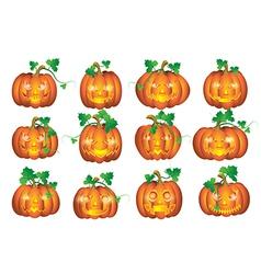 Set pumpkins vector