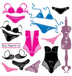 Sexy lingerie set - Woman underwear vector image vector image